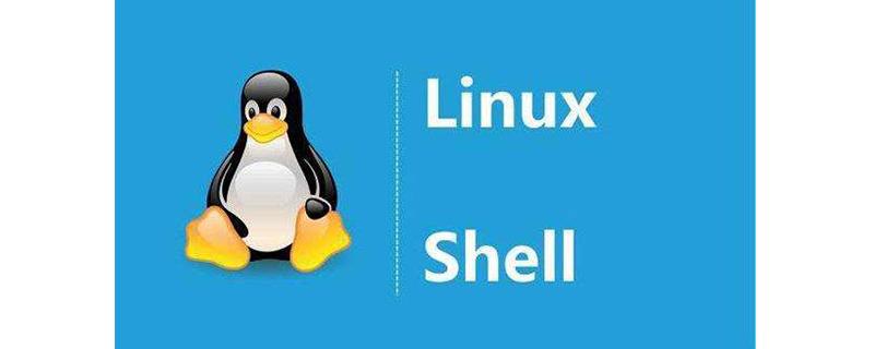 如何在Shell脚本中提取文件名和扩展名