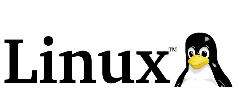 Linux实时查看日志的四种命令详解