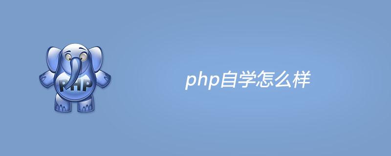 php自學怎么樣?