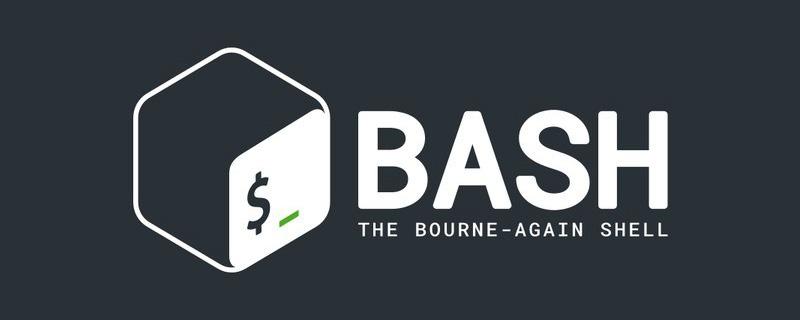 如何检查Bash中是否存在文件或目录
