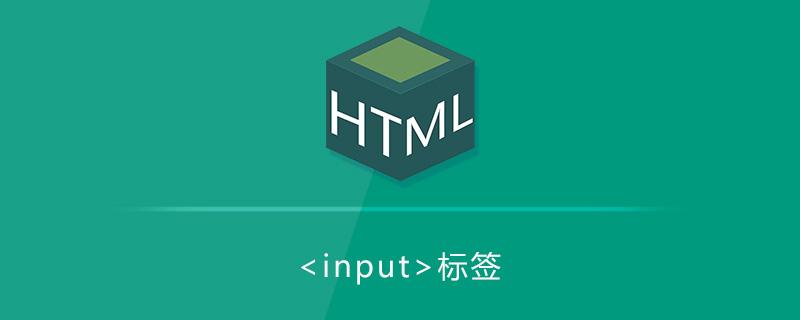html input標簽怎么用