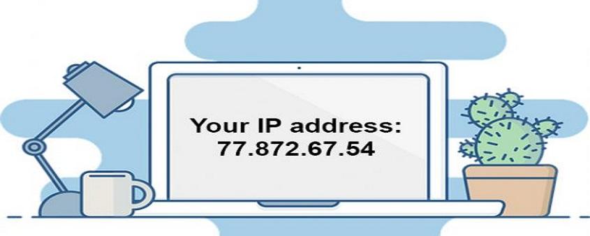 IP是什么意思