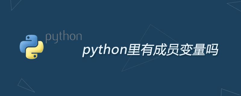 python里有成員變量嗎