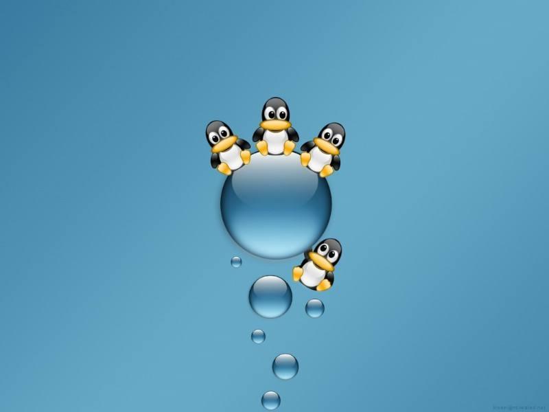 Linux下导出数据库文件进行统计+去重