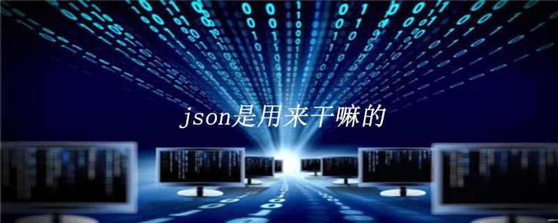 json是是什么