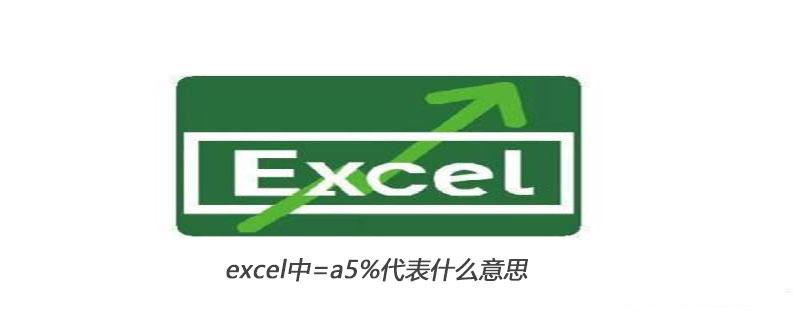 excel中=a5%代表什么意思