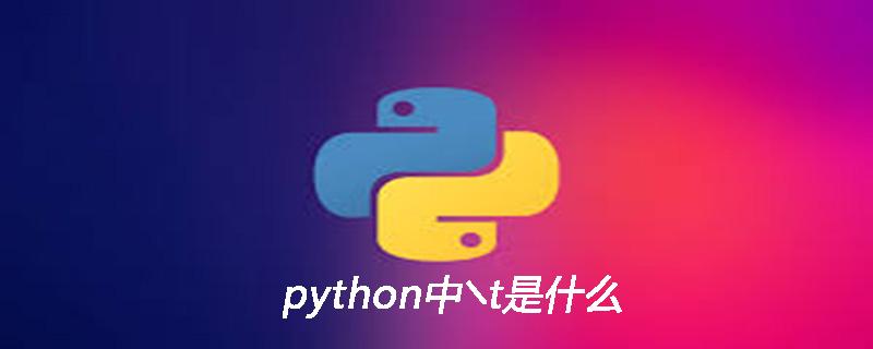 python中╲t是什么