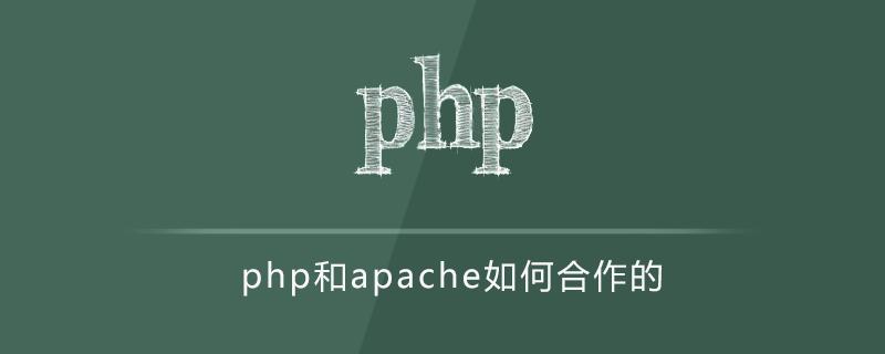php和apache如何合作的
