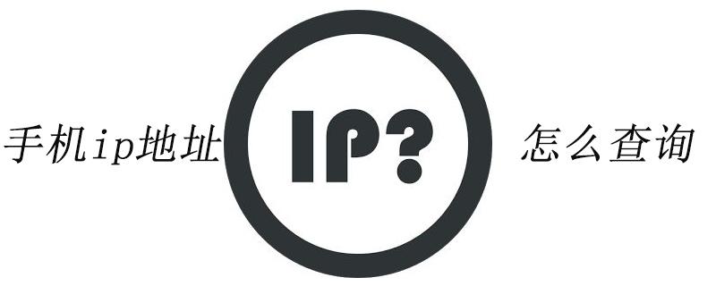 手机lp地址怎么查询