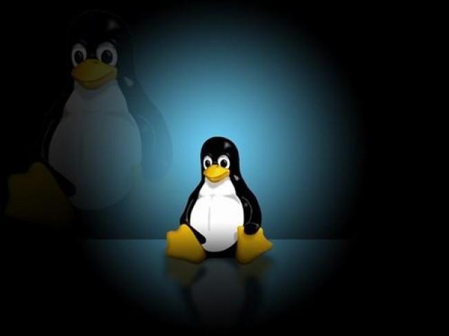 Linux中文件目录结构的详细介绍