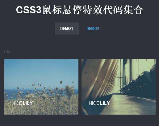 30个纯CSS3鼠标悬停动画特效代码下载