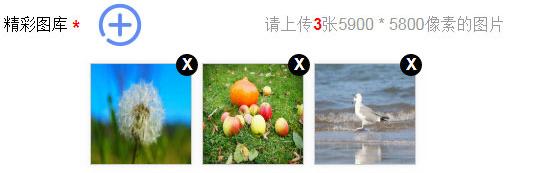 强大的jQuery多图片上传预览代码