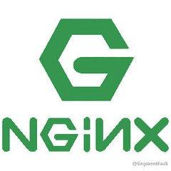 Nginx辅助器