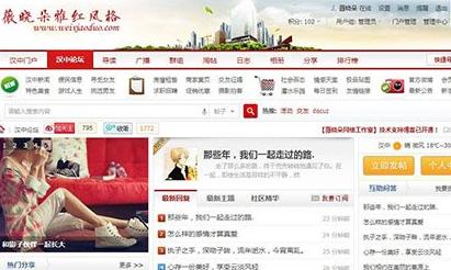 Discuz雅红地方门户网站模板 v1.4 GBK UTF8版