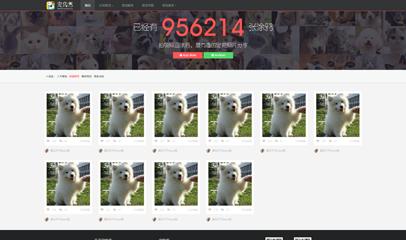 宠物秀简洁大气html5响应式模板