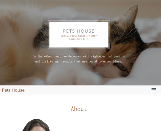 HTML5大气简洁宠物前端网站模板