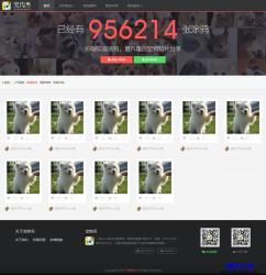 HTML5-宠物社区分享网站响应式模板