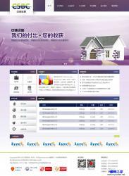 HTML-紫色猎头服务咨询公司模板