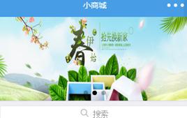 微信小程序-购物商城网站