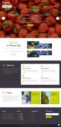 html蔬菜水果种植公司响应式模板