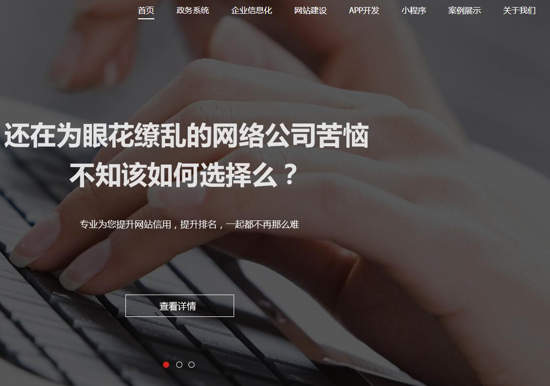 HTML5宽屏大气网络科技技术开发公司企业官网网站模板
