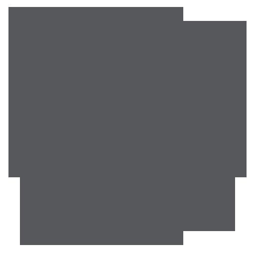 12个禅意花纹PNG图标