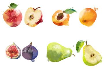 14種水彩水果PSD素材