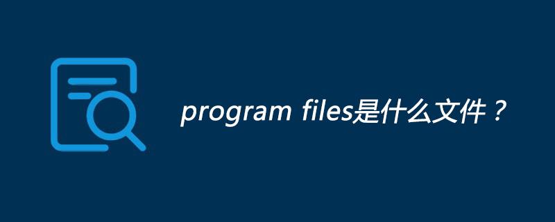 program files是什么文件?