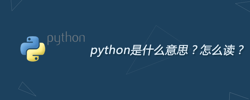 python是什么意思?怎么读?