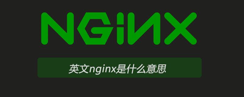 英文nginx是什么意思
