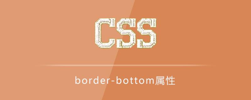 border-bottom属性有什么用