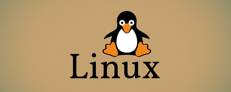 Linux中如何更改文件的所属用户和组别?