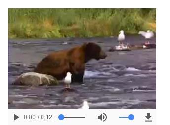 如何用HTML5在頁面中插入可自動播放的視頻