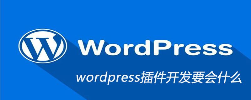 wordpress插件开发要会什么_wordpress教程