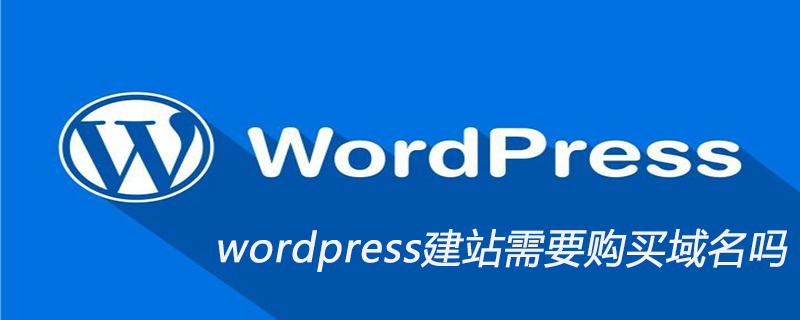 wordpress建站需要购买域名吗_wordpress教程