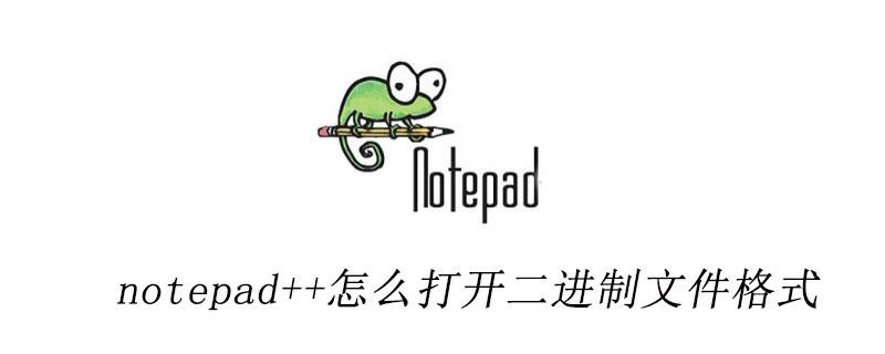 notepad++怎么打开二进制文件格式