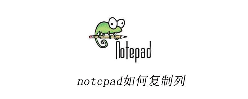 notepad如何复制列