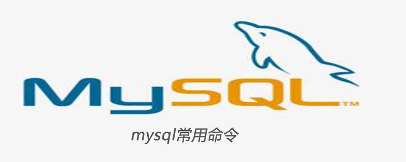 mysql常用命令有什么