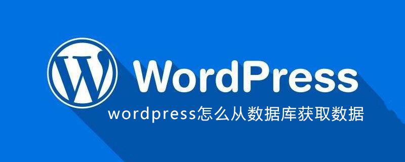 wordpress怎么从数据库获取数据_wordpress教程