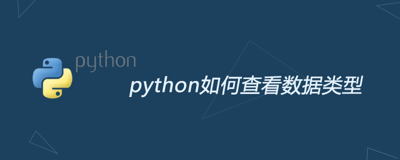 python如何查看數據類型