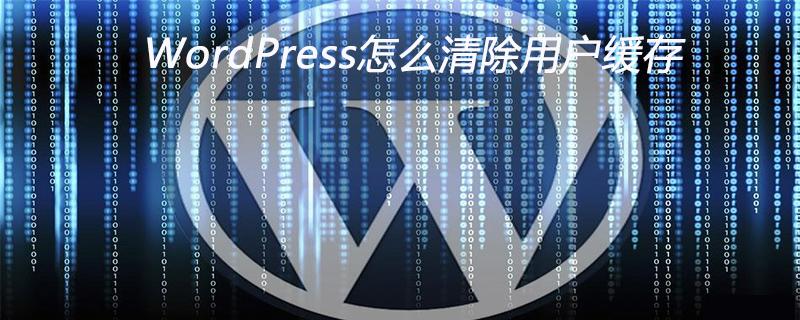 WordPress怎么清除用户缓存_wordpress教程