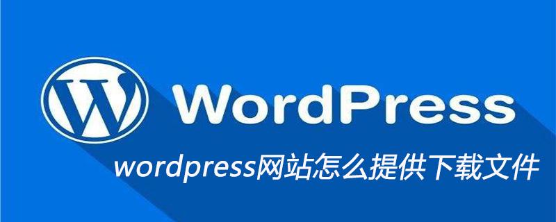 wordpress网站怎么提供下载文件_wordpress教程