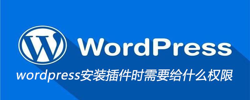 wordpress安装插件时需要给什么权限_wordpress教程