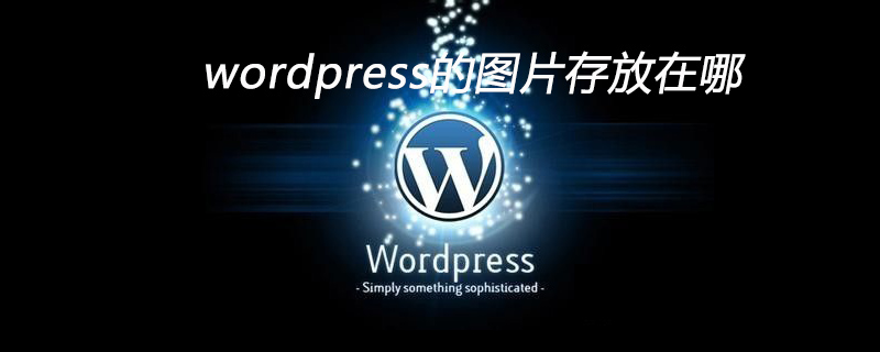 wordpress的图片存放在哪
