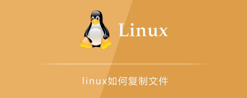 linux如何复制文件