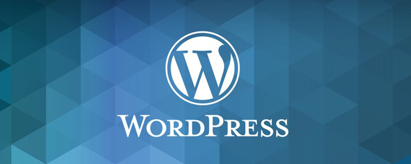 wordpress数据放在哪里