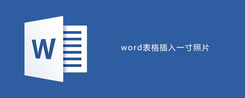 word表格中插入一寸照片