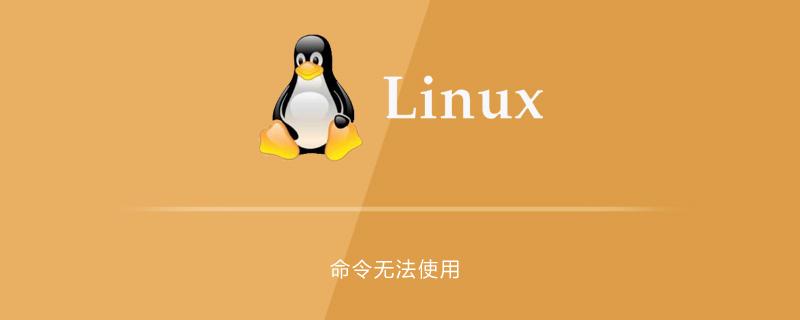 linux系统命令无法使用