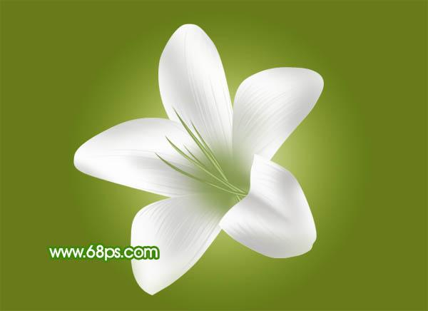 Photoshop 白色的百合花制作教程