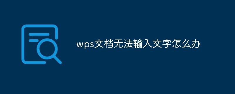 wps文档无法输入文字怎么办